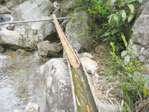 竹子饮水_辰溪县50水库失去灌溉功能135万人饮水困